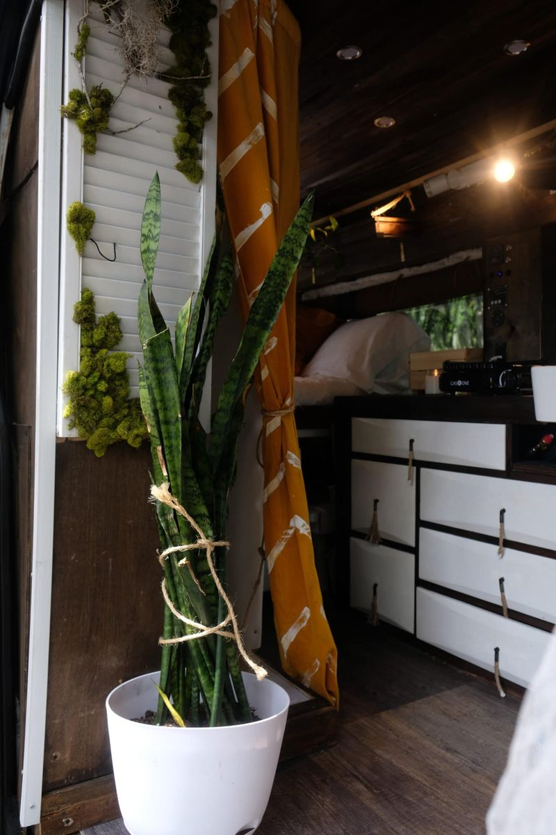 Picture 4/11 of a 2018 Ford Transit Conversion Van for sale in Casselberry, Florida